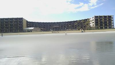 Daytona Beach Shores Condo/Townhouse For Sale: 2301 S Atlantic Avenue #132