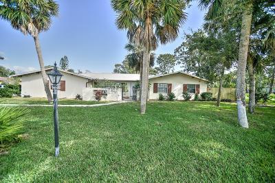Ormond Beach Single Family Home For Sale: 535 John Anderson Drive