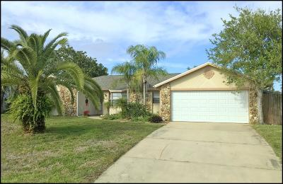 Ormond Beach Single Family Home For Sale: 48 N Sea Island Drive