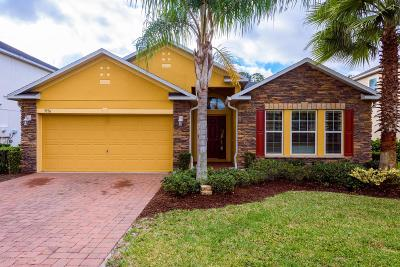 Port Orange Single Family Home For Sale: 3936 Sunset Cove Drive