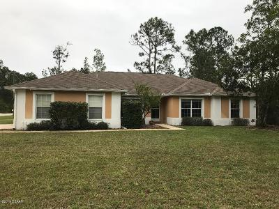 Palm Coast Single Family Home For Sale: 158 Ryberry Drive