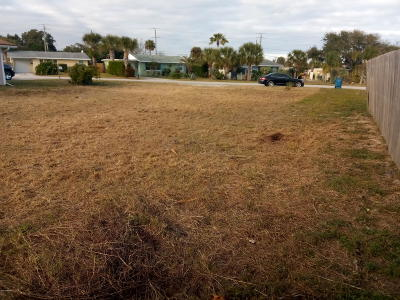 Volusia County Residential Lots & Land For Sale: 56 River Drive