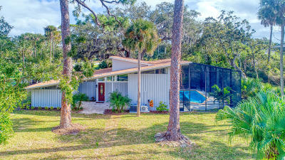 Ormond Beach Single Family Home For Sale: 401 John Anderson Drive