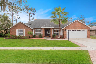 Port Orange Single Family Home For Sale: 6123 Half Moon Drive