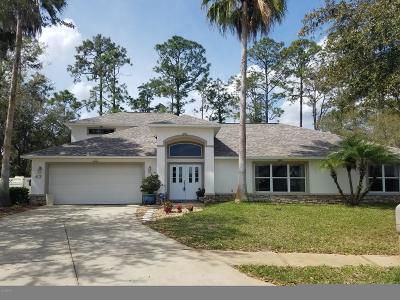 Ormond Beach Single Family Home For Sale: 43 Peruvian Lane