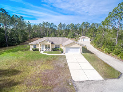 Ormond Beach Single Family Home For Sale: 389 Sugar Pine Lane