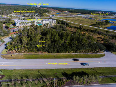 Volusia County Residential Lots & Land For Sale: N Tomoka Farms Road