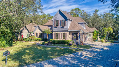 Volusia County Single Family Home For Sale: 4 High Bluff Way