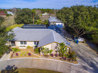 Port Orange Single Family Home For Sale: 320 Quiet Trail Drive