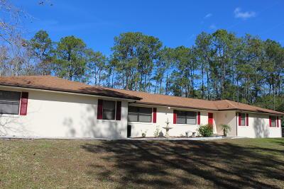 Ormond Beach Single Family Home For Sale: 3626 Conifer Lane