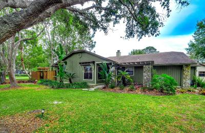 Volusia County Single Family Home For Sale: 132 Ibis Court