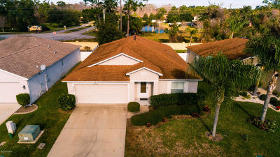 Daytona Beach Single Family Home For Sale: 375 Dahoon Holly Drive