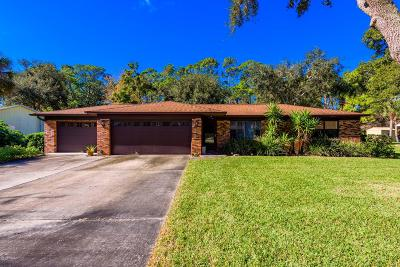 Ormond Beach Single Family Home For Sale: 1212 Northside Drive