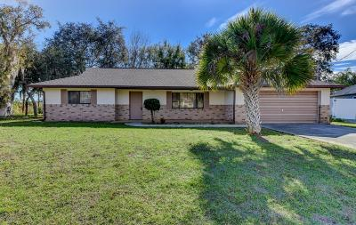Volusia County Single Family Home For Sale: 1979 Stacey Circle