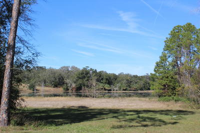 Volusia County Residential Lots & Land For Sale: 1355 Shaw Lake Road