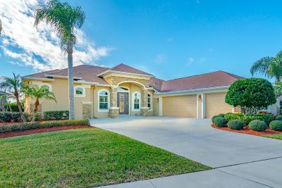 New Smyrna Beach Single Family Home For Sale: 3316 E Locanda Circle
