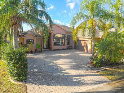 Volusia County Single Family Home For Sale: 4244 Hidden Lake Drive