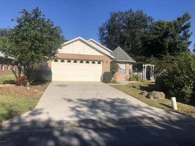 Ormond Beach Single Family Home For Sale: 1 Reflections Village Drive