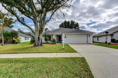 Port Orange FL Single Family Home For Sale: $289,000
