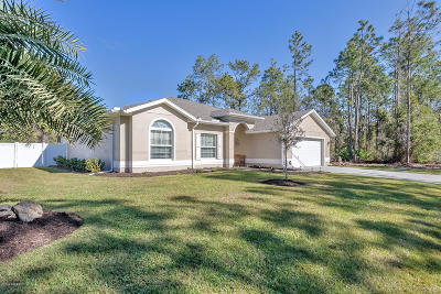 Palm Coast Single Family Home For Sale: 1 Kathryn Place
