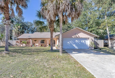 Port Orange Single Family Home For Sale: 5930 Hatteras Drive