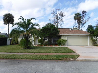 Daytona Beach Single Family Home For Sale: 212 Hollowbrook Circle