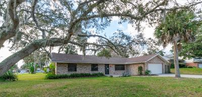 Port Orange Single Family Home For Sale: 813 Upland Drive