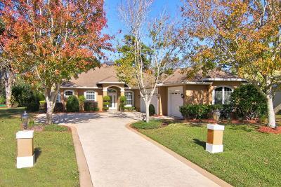 Port Orange Single Family Home For Sale: 1827 Spruce Creek Boulevard