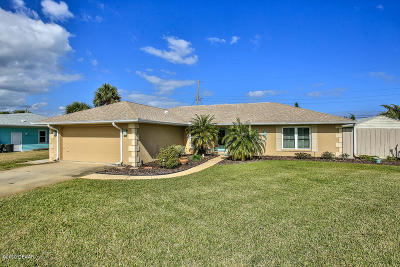 Ormond Beach Single Family Home For Sale: 115 Sand Dunes Drive