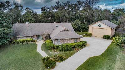 Ormond Beach Single Family Home For Sale: 1396 Aleut Lane
