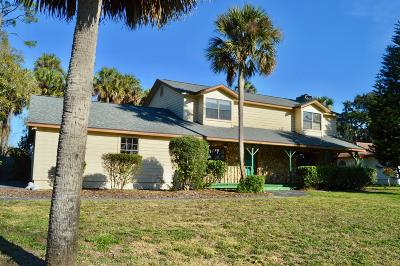 Daytona Beach Single Family Home For Sale: 509 Pelican Bay Drive