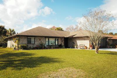 Port Orange Single Family Home For Sale: 3630 Socha Way