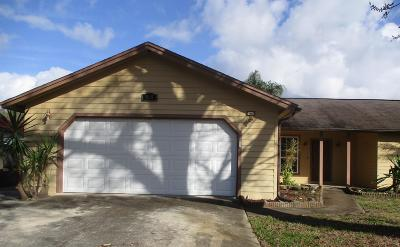 Port Orange Single Family Home For Sale: 965 W Bramblebush Circle