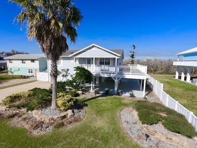 Palm Coast Single Family Home For Sale: 39 Moody Drive