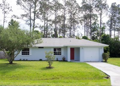Palm Coast Single Family Home For Sale: 7 Zenger Court