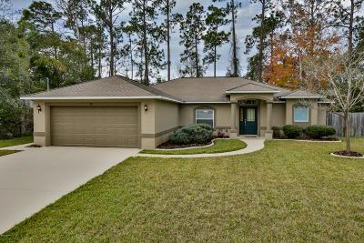 Palm Coast Single Family Home For Sale: 30 Banton Lane