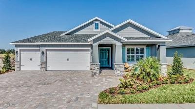 New Smyrna Beach Single Family Home For Sale: 2918 Bella Flore Terrace
