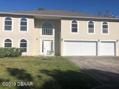 Palm Coast Single Family Home For Sale: 53 Paul Lane