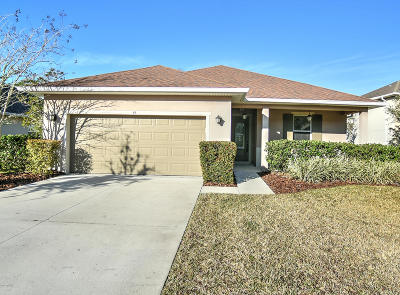 Ormond Beach Single Family Home For Sale: 44 Levee Lane