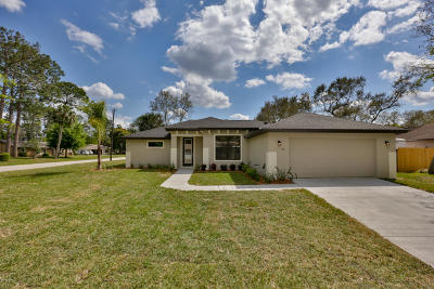 Ormond Beach Single Family Home For Sale: 10 Nightingale Lane
