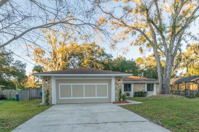 Ormond Beach Single Family Home For Sale: 1092 Peninsula Drive