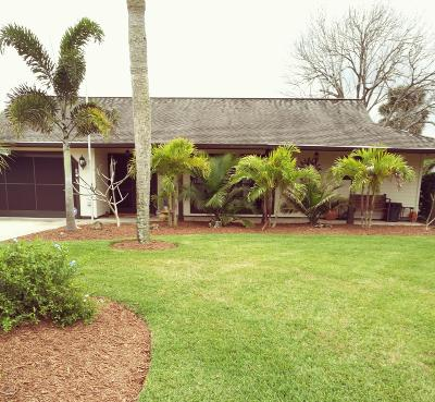 Port Orange Single Family Home For Sale: 715 Brom Bones Court