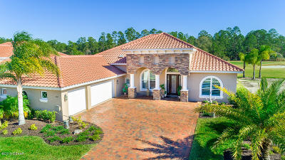 New Smyrna Beach Single Family Home For Sale: 2816 S Asciano Court