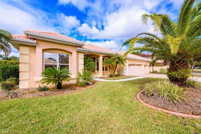 Daytona Beach Single Family Home For Sale: 912 Sea Duck Drive