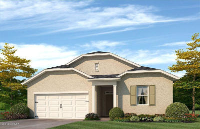 New Smyrna Beach Single Family Home For Sale: 2952 Gibraltar Boulevard