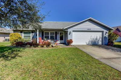 Port Orange Single Family Home For Sale: 1002 Sandy Terrace Court