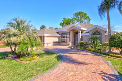 Port Orange Single Family Home For Sale: 1868 Seclusion Drive