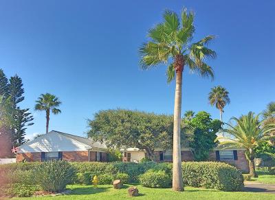 Ormond Beach Single Family Home For Sale: 233 Ocean Terrace