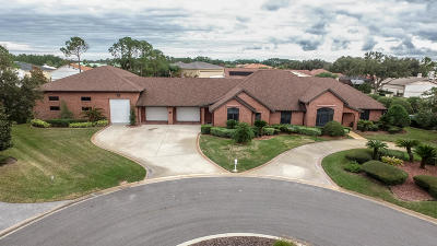 Spruce Creek Fly In Single Family Home For Sale: 2878 Rickenbacker Trail