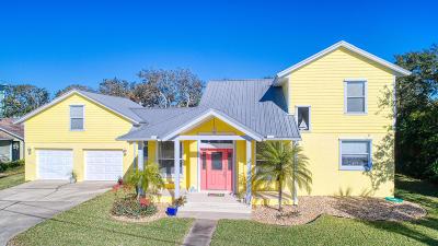Ormond Beach Single Family Home For Sale: 141 Avalon Drive